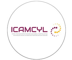 icamcyl-consortium-logo