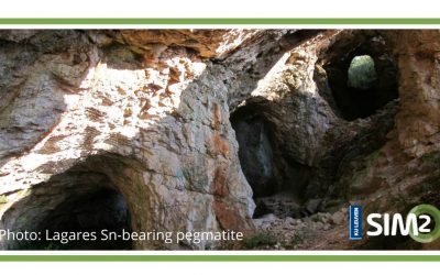 Which geological processes control Nb-Ta-Li and W-Sn pegmatite deposits?